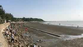 Sau buổi lễ, TƯ Hội Liên hiệp Phụ nữ Việt Nam tổ chức và hoạt động dọn rác tập thể trên bãi biển
