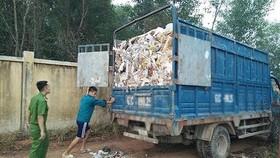 Phát hiện hơn 47 tấn chất thải rắn công nghiệp