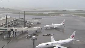 Hủy nhiều chuyến bay đi, đến Nhật Bản và Hàn Quốc do bão Tapah
