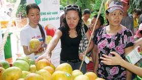 遊客在選購水果。