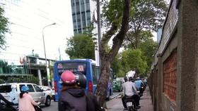 須懲處在人行道上騎摩托車者
