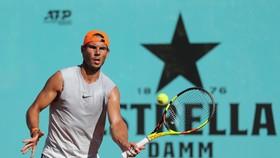Nadal trong một buổi tập gần đây