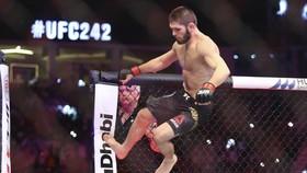 Khabib là Vua của làng MMA với thành tích 28 trận bất khả chiến bại
