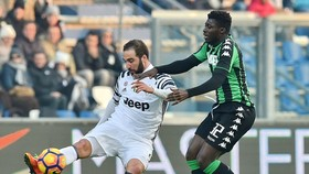 Gonzalo Higuain (trái, Juventus) sút bóng trước Alfred Duncan (Sassuolo). Ảnh: Getty Images.