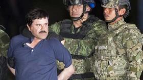 Mexico chuyển trùm ma túy Guzman đến nhà tù gần biên giới với Mỹ