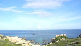 Kiến nghị đánh giá lại tác động ảnh hưởng môi trường vụ nhiệt điện Vĩnh Tân xin đổ thải xuống biển