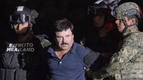 """Dẫn độ trùm ma túy """"El Chapo"""" Guzman sang Mỹ"""