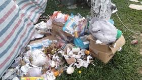 Đà Nẵng: Công viên 29 tháng 3 ngập rác sau tết