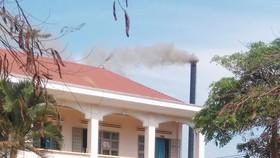 Nhà máy chế biễn gỗ cao su xả khói ngay cạnh trường học. Ảnh: HỮU PHÚC