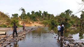 Khẩn trương làm rõ thông tin nhà máy mì xả thải xuống sông