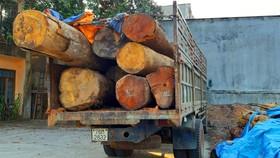 """Bắt thêm xe chở gỗ lậu từ """"cổng trời""""  Đắk Long"""
