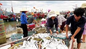 Loay hoay bảo quản thủy hải sản