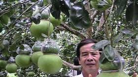 Nhộn nhịp ngày hội Tam nông và sản phẩm làng nghề năm 2019 ở Hậu Giang