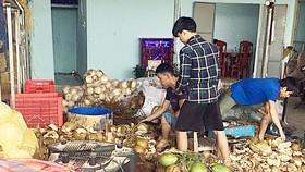 Dừa được gọt vỏ ngâm hóa chất tẩy trắng và đem đi tiêu thụ tại TP Đà Nẵng