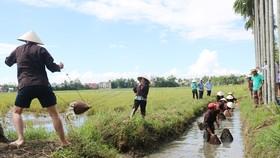 Phát triển du lịch sinh thái bền vững gắn với nông nghiệp nông thôn