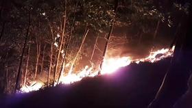Kịp thời không chế 3 đám cháy rừng tại Hiệp Đức