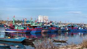 Ngăn chặn, chấm dứt tàu cá và ngư dân vi phạm vùng biển nước ngoài