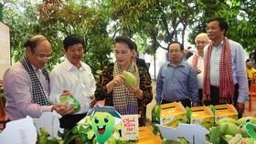 Chủ tịch Quốc hội Nguyễn Thị Kim Ngân: Đồng Tháp là điểm sáng trong mô hình liên kết nông dân