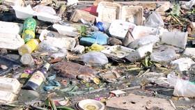 Vận động người dân không xả rác vì thành phố văn minh - sạch đẹp - an toàn