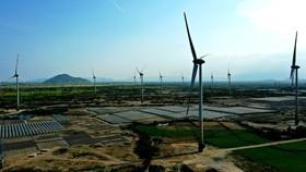 Đưa vào vận hành tổ hợp điện mặt trời và điện gió tại tỉnh Ninh Thuận. Ảnh QUỐC HÙNG