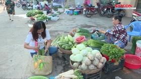 """Đi chợ với giỏ đệm """"thời trang"""", giải pháp mới bảo vệ môi trường"""
