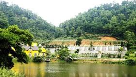 Một công trình vi phạm đất rừng phòng hộ ở xã Minh Trí