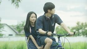 Phim Việt đầu tay: Được mất mong manh