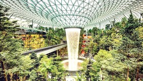 Mỗi tuần một điểm đến Kỳ quan ở Changi