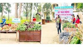 Giới trẻ nhiệt thành tham gia bảo vệ môi trường
