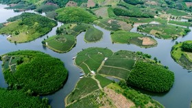 Green tea island in Thanh Chuong District, central Nghe An province