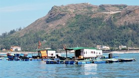 An aquatic farm is built in the sea off Ly Son Island. The central province of Quang Ngai has allocated funds to preserve and protect the Ly Son marine protected area for the 2018-22 period. (Source: VNA)