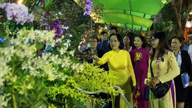 City's leaders visit Ho Chi Minh City's Spring Flower Festival 2019. (Photo: sggp)