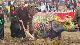 Deputy Prime Minister Truong Hoa Binh attends Tich Dien (ploughing) festival. (Photo: VGP)