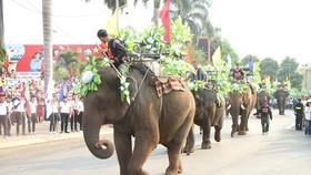 Elephants in street festival