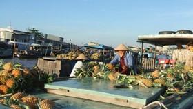 Sinh động ngày hội du lịch chợ nổi Cái Răng