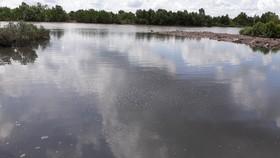 Nguồn nước ô nhiễm phía sau một nhà máy ở Khu công nghiệp Hòa Trung thải ra sông