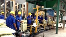 Dây chuyền sản xuất của Công ty CP phân bón Bình Điền