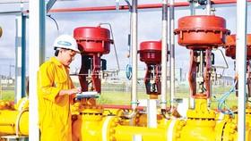 Bất ngờ cổ phiếu dầu khí