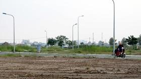 Một số khu đất được tách thửa trong thời gian qua