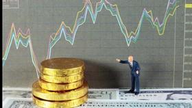 Các website đầu tư tài chính được giới môi giới chào hàng với lợi nhuận siêu tưởng