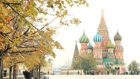 Thu vàng nước Nga (Ảnh: TST tourist)
