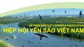 Ông Phạm Thế Ruân được bầu làm Chủ tịch Hiệp hội Yến sào Việt Nam