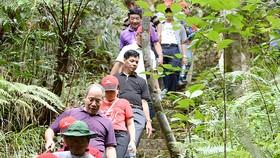 Du khách khám phá núi rừng Bạch Mã bằng đường mòn