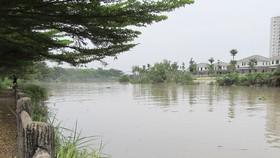 Bảo vệ cảnh quan dự án ven sông