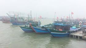 100% tàu thuyền của ngư dân Thừa Thiên – Huế đã vào bờ tránh bão số 4.