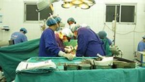 Many brain-dead people donate organs