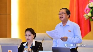 NA Vice Chairman Do Ba Ty speaks at the session on October 16 (Photo: quochoi.vn)