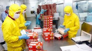 芹苴市加工蝦隻銷往外國市場。(圖源:VOV)