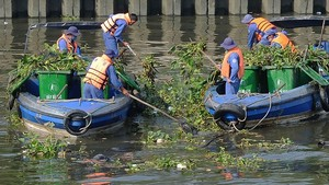 清除河涌的垃圾,以防止淤塞。