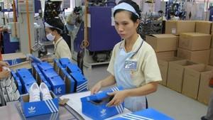 阿迪達斯鞋廠包裝車間一隅。